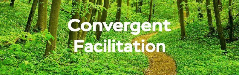 Convergent Facilitation Home Header_new