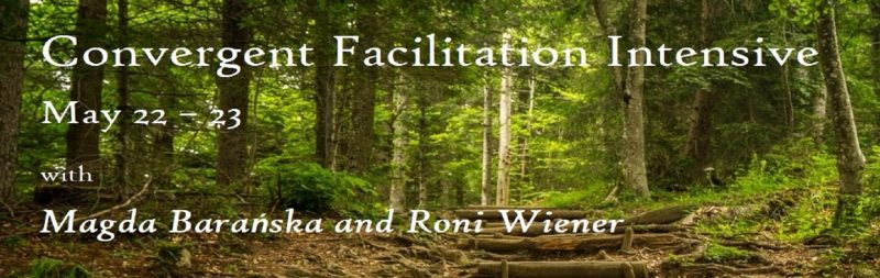 Convergent Facilitation Intensive